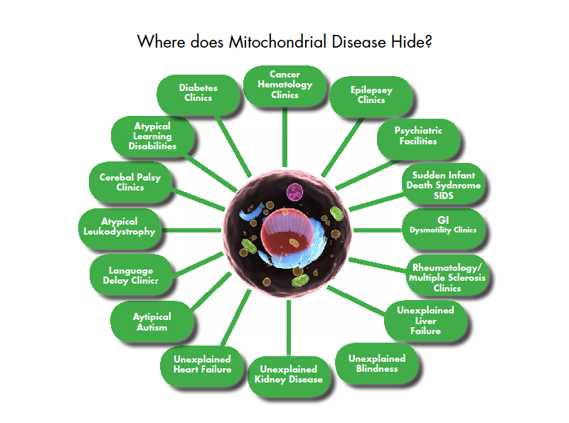 Diagram showing how mitochondrial diseases can be misdiagnosed