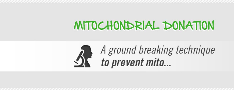 Mitochondrial donation